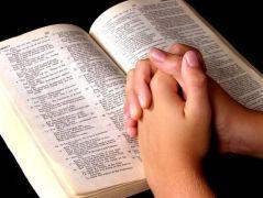 Biblia 33